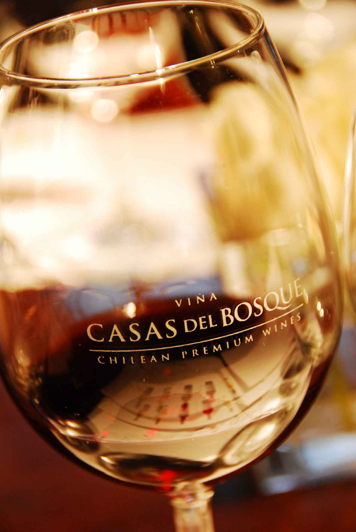 Casablanca - Casas del Bosque Vineyard