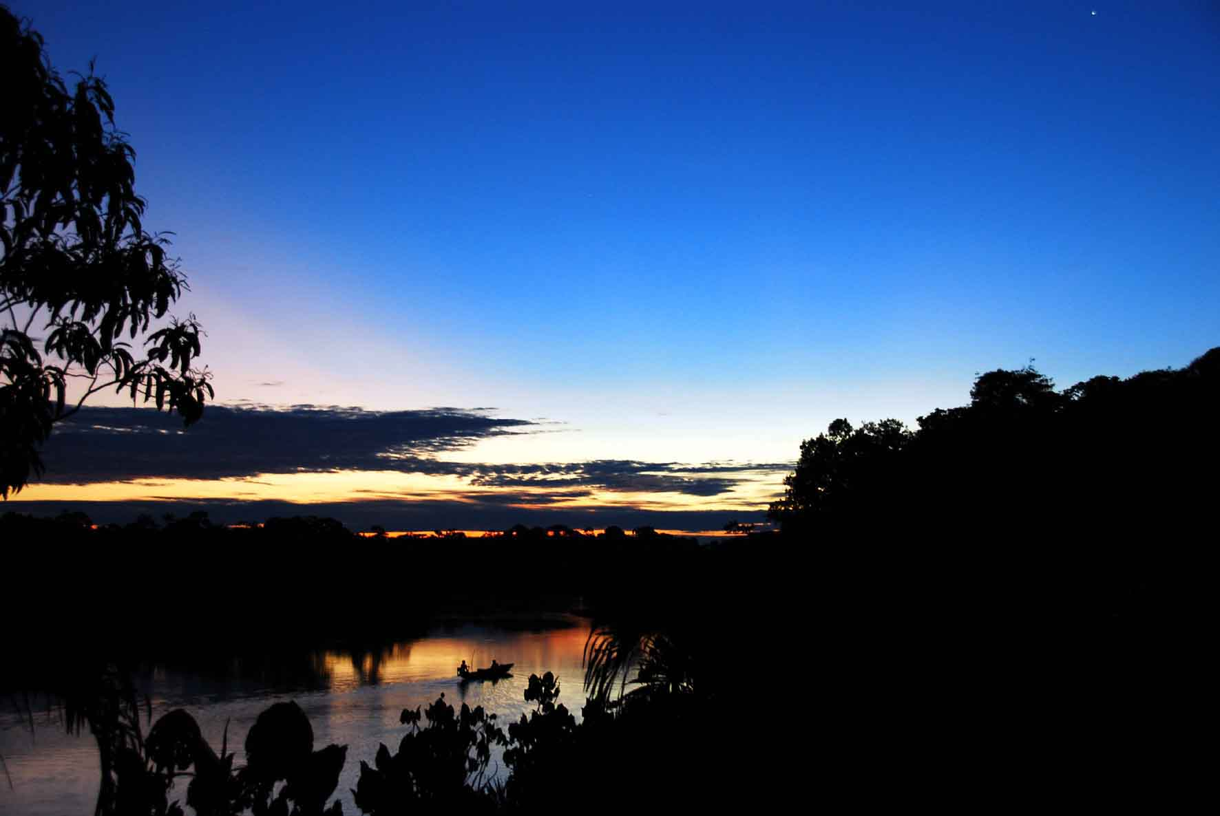 Amazon Jungle Sunset